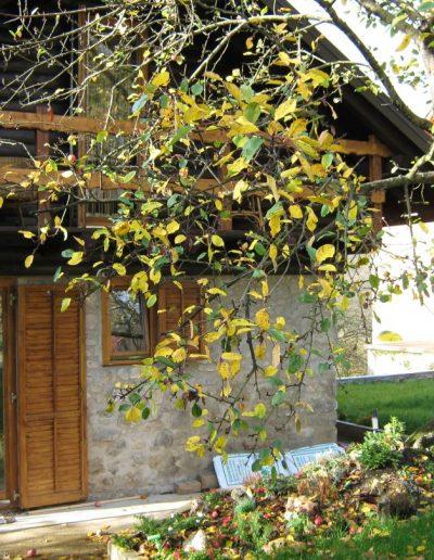 Kuća Topić 4