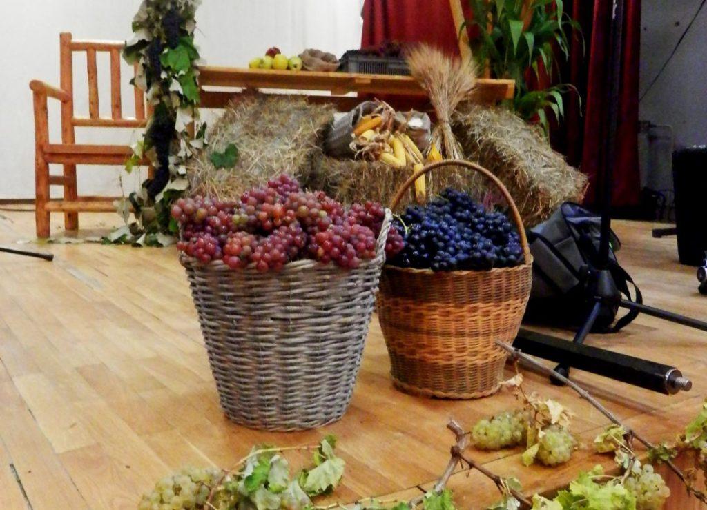 Festival vina