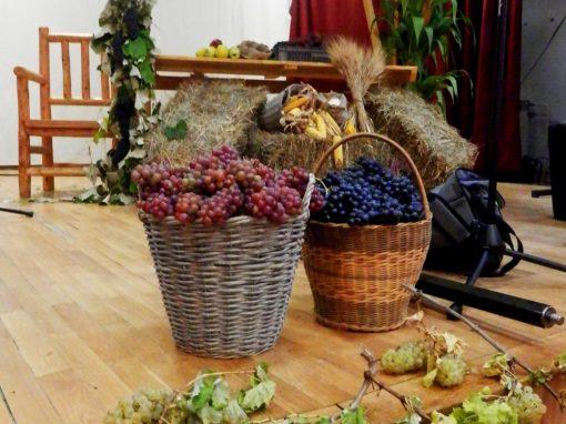 21.09.2019. Festival vina, meda, sira i domaćeg kruha