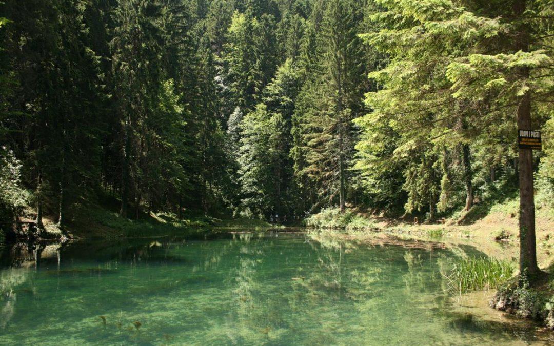 Čogrljevo jezero Moravice