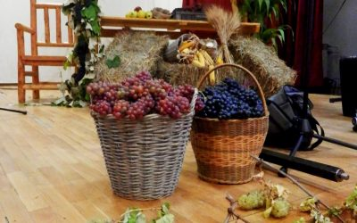 Festival vina, meda, sira i domaćeg kruha
