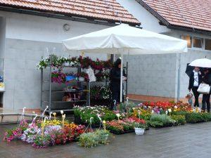 Gradska tržnica